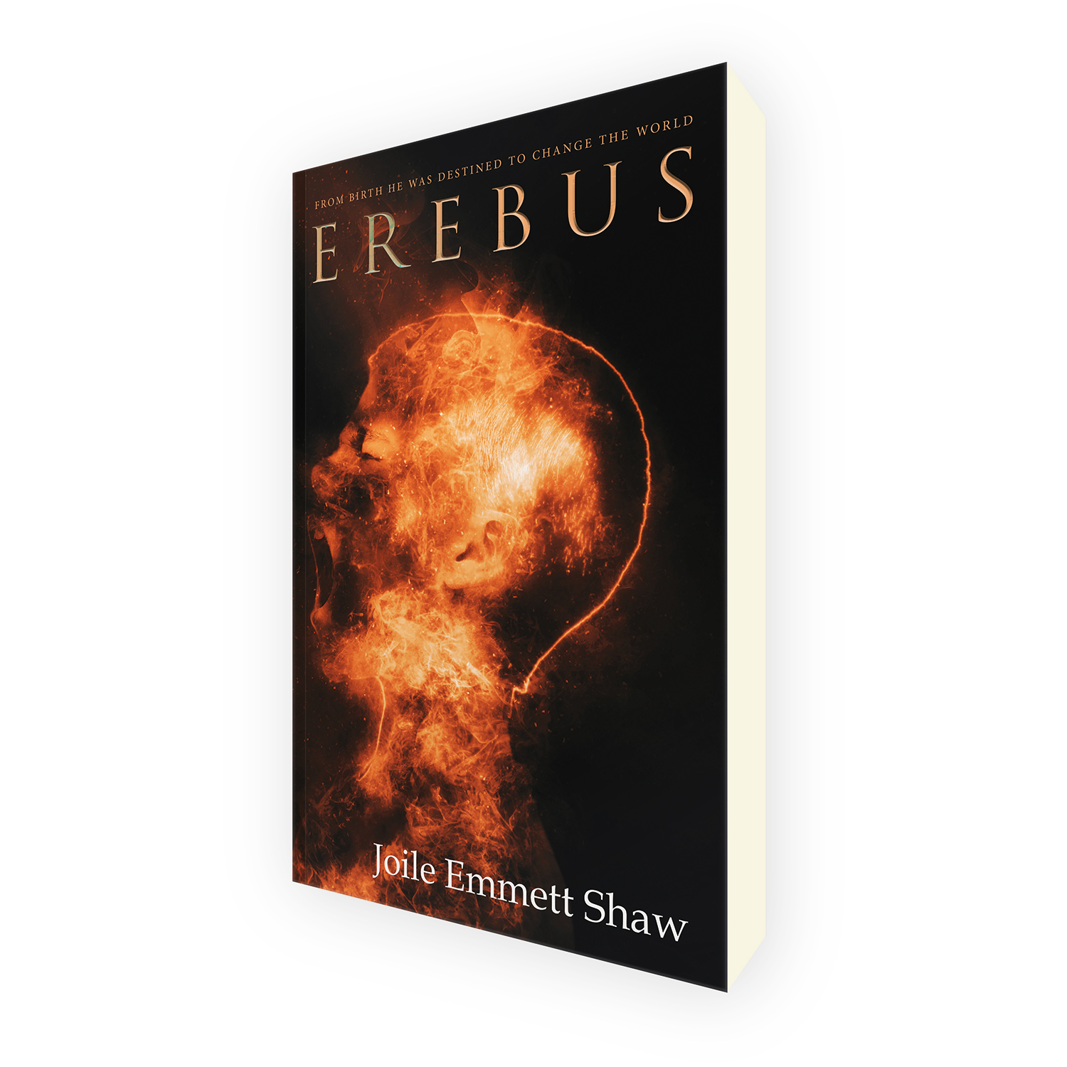 'Erebus' is a bespoke cover design for a modern horror novel. The book cover was designed by Mark Thomas, of coverness.com. To find out more about my book design services, please visit www.coverness.com.