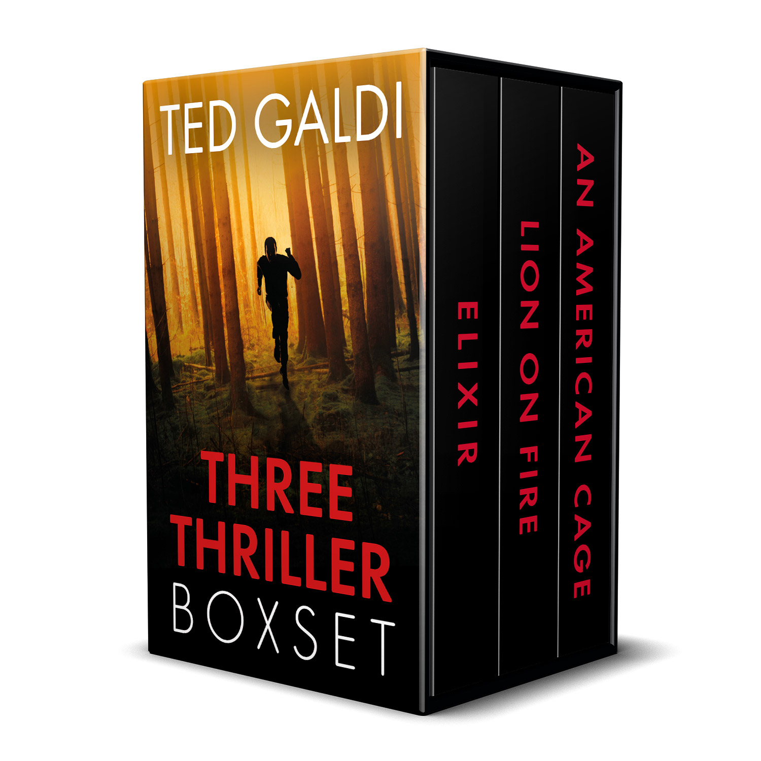 The 'Ted Galdi Three Thriller Boxset' is an ebook boxset containing three, previously-published American thrillers. The virtual boxset design and interior ebook formatting were completed by Mark Thomas, of coverness.com. To find out more about my book design services, please visit www.coverness.com