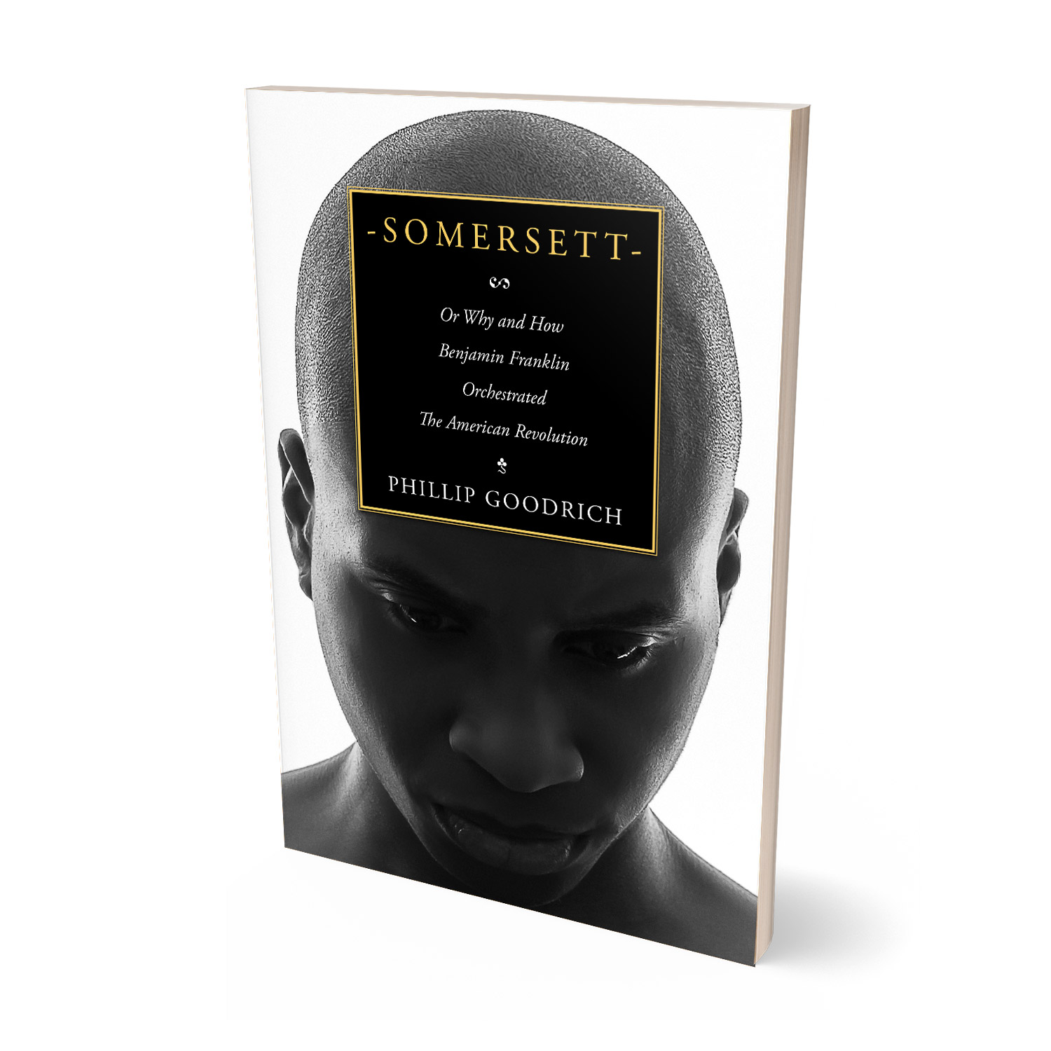 'Somersett' is an incisive take on the origins of the American Revolution. The author and Phillip Goodrich. The cover design and interior manuscript formatting are by Mark Thomas. Learn what Mark could do for your book by visiting coverness.com.